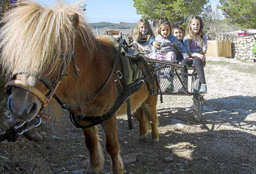 Para los niños un paseo en carro es en sí toda una fiesta. Foto: TONI ESCOBAR