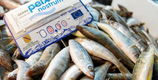 El 'gerret d'artet', pescado a la manera tradicional, está mejor valorado. Foto: TONI ESCOBAR
