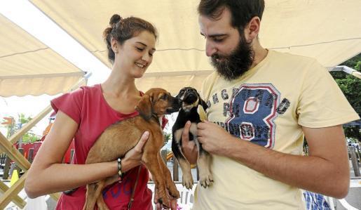 Dos de los voluntarios de RqueR con cachorros que tienen en acogida mientras se les busca dueño. Foto: ARGUIÑE ESCANDÓN
