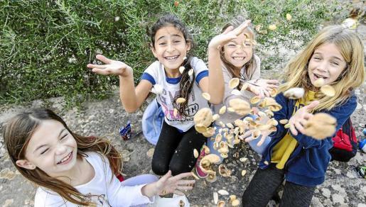 Los niños del colegio, sin importar la edad ni el curso al que pertenecían, disfrutaron muchísimo entre juegos y frutos secos. Hubo para todos, sobre todo gran cantidad de castanyes y pinyons. Foto: ARGUIÑE ESCANDÓN