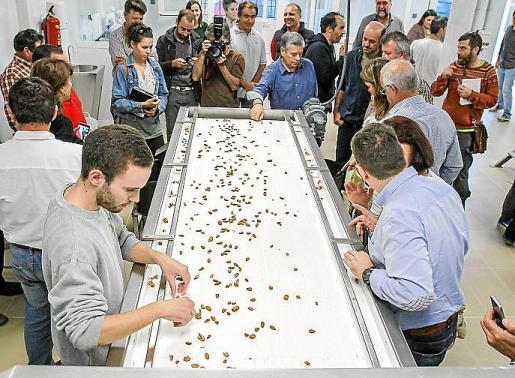 La presentación de la máquina generó mucha expectación entre las autoridades políticas y vecinos y agricultores de la isla de Eivissa y agrupados en esta cooperativa.