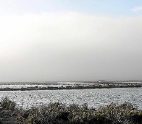 Desde los estanques de Ses Salines era imposible ver la terminal del aeropuerto de Eivissa, que ayer por la mañana estaba completamente cubierta por la niebla. Foto: D. ESPINOSA