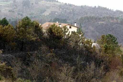 Vista de la zona afectada por el incendio declarado este sábado en el monte Igeldo y que ya ha quedado prácticamente extinguido.