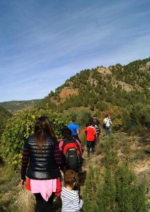Grupo de menores practicando senderismo.