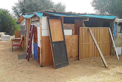 En torno a una veintena de personas viven en las diferentes chabolas que se encuentran entre el arbolado de esta zona de Can Misses.
