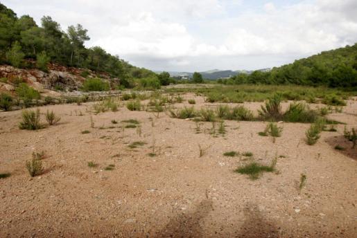 La nueva depuradora de Vila estará en los terrenos de sa Coma.