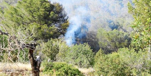 Una vecina dio la voz de alarma y acudieron los bomberos, Ibanat, un avión y un helicóptero para sofocar las llamas.