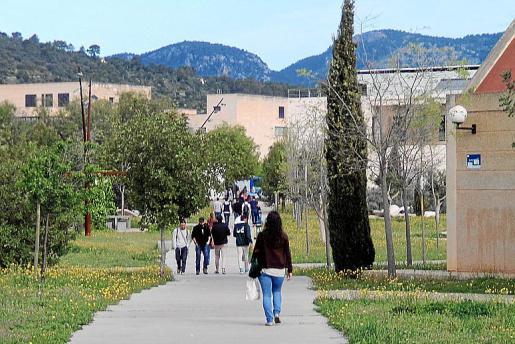 En la encuesta realizada para conocer el perfil de los universitarios de la Xarva Vives participaron hasta mil estudiantes de la Universitat balear.
