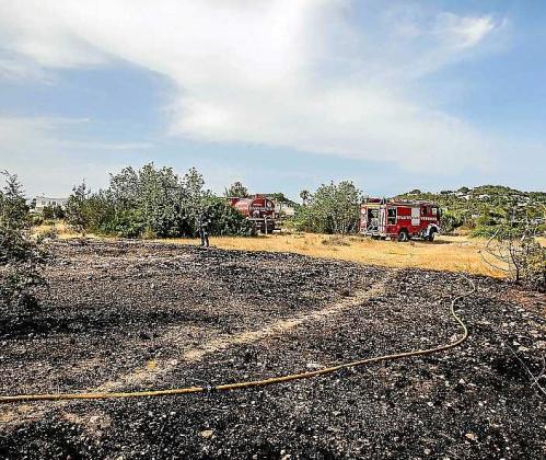 Superficie agrícola quemada por el fuego en Can Ramón. Foto: T. ESCOBAR