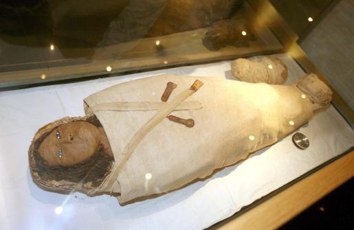 Tampoco descartan exponer el cuerpo en un museo.