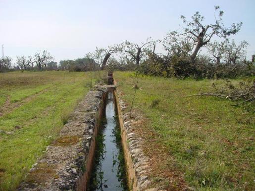 El déficit de lluvias es más acusado en Menorca e Ibiza que en Mallorca.