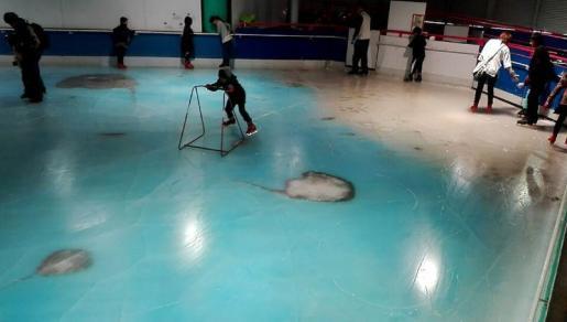 Un parque de atracciones japonés ha cerrado su pista de hielo tras las numerosas críticas vertidas contra ésta por la presencia de unos 5.000 peces congelados.
