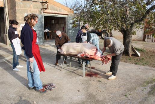 La matanza se realiza estos meses de invierno.