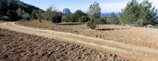 Imagen de la parcela del terreno de la zona de Cala d'Hort donde se prevé la construcción de la vivienda. g Fotos: DANIEL ESPINOSA