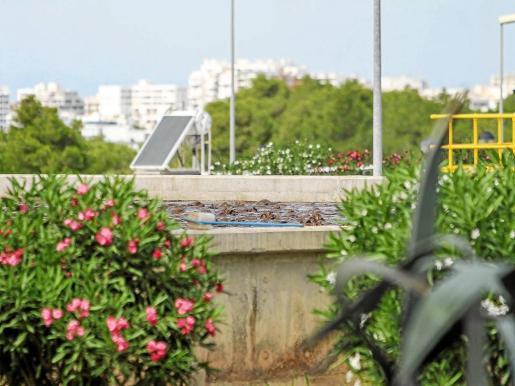 Depuradora de Sant Antoni, cuya agua depurada no se reutiliza y se tira al mar a través de un emisario.