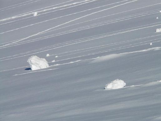 El grupo, compuesto por un guía y ocho esquiadores, se encontraba a una altura de 2.100 metros.