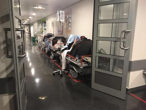 El pasado 26 de enero el Sindicato de Técnicos de Enfermería SAE Baleares aseguró que durante la última semana de enero se vivió una «situación extrema» en el servicio de Urgencias de Son Espases.