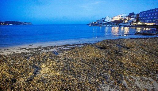 Los vecinos y hoteleros de Talamanca reclaman que se adecente la playa ante el adelanto de la próxima temporada turística a marzo.