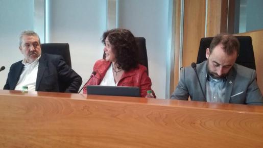 Pepa Marí, en el centro de la imagen, durante un pleno del Consell d'Eivissa.