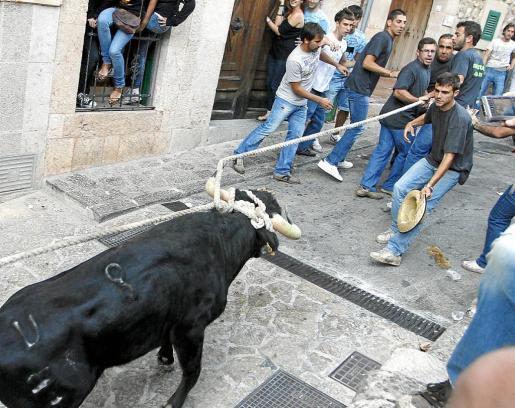 La nueva proposición de ley que preparan los partidos impedirá que haya corridas de toros, pero no Correbou.