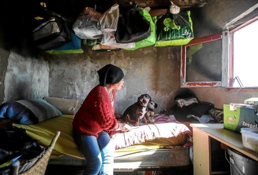 Noki juega con su perro Chili, al que considera como un hijo, en el interior de la infravivienda que ocupa en la zona de ses Feixes des Prat de ses Monges de Vila.
