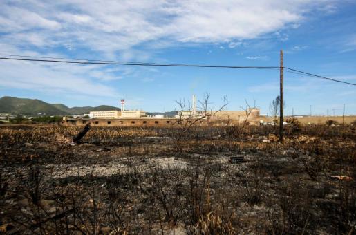 El corazón de ses Feixes des Prat de Vila quedó completamente calcinado tras el incendio del pasado lunes. Foto: Toni Escobar