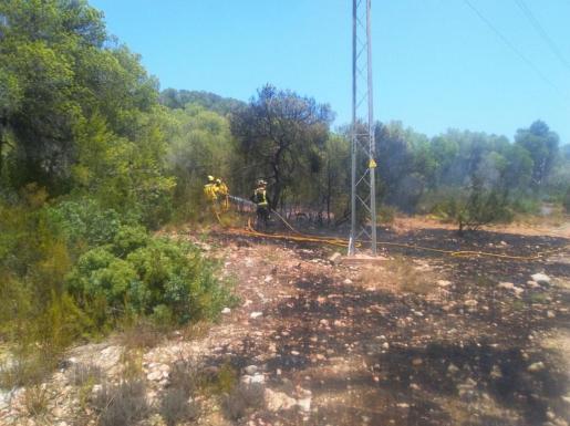 El incendio afectó a 0,13 hectáreas de pinar.