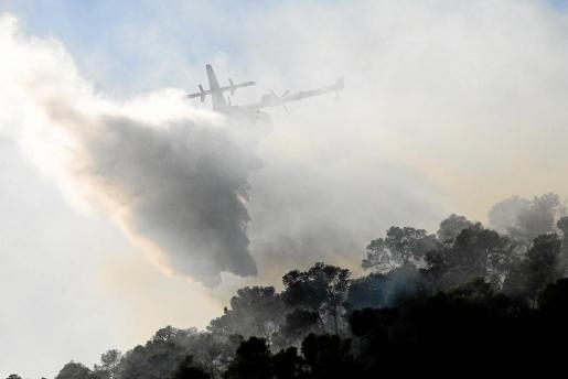 Los medios aéreos no pararon de sobrevolar la zona y realizaron decenas de descargas para combatir el avance de las llamas.