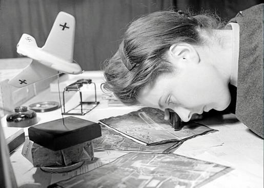 Una mujer analiza una de las imágenes aéreas.