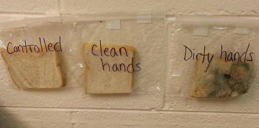 Un sencillo experimento demuestra la importancia de lavarse las manos antes de comer.