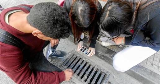 Franklin Ortega, Marta Paniagua y Estephani Bravo fotografían el interior de una alcantarilla de Vila para recoger datos sobre el mosquito tigre.