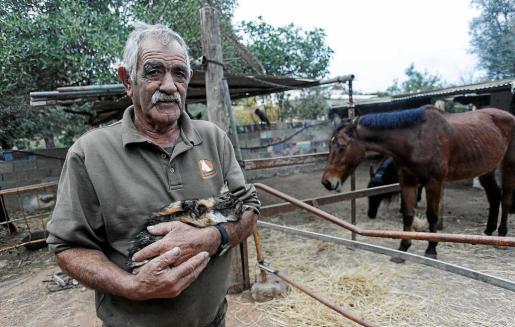 Alrededor de 80 animales de diferentes especies conviven junto a Luciano y su familia desde hace años.