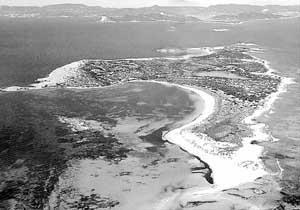 El hallazgo tuvo lugar en el año 1996 en el islote de s'Espalmador por un turista alemán que paseaba por la zona. Foto: JULIÁN GUISADO.