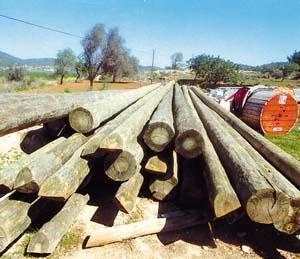 Los postes ya se encuentran en el Pla de Corona.