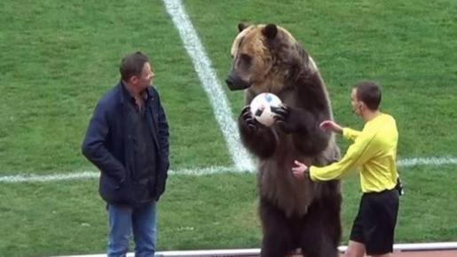 El saque de honor de un oso en el fútbol ruso da la vuelta al mundo