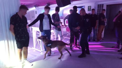 Dos detenidos y quince denunciados durante el fin de semana en Sant Antoni.