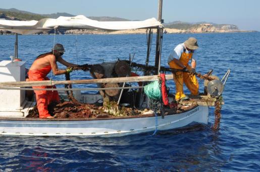 El Consell inicia un proyecto de recuperación de redes abandonadas en el fondo marino.