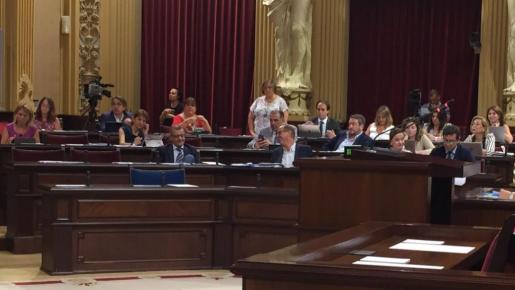 Montse Seijas, de pie, durante el pleno del Parlament.