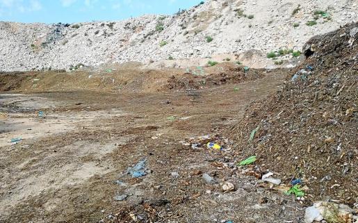 Las cientos de toneladas de materia orgánica que se acumulan en es Cap serán posteriormente tratados para hacer compost.