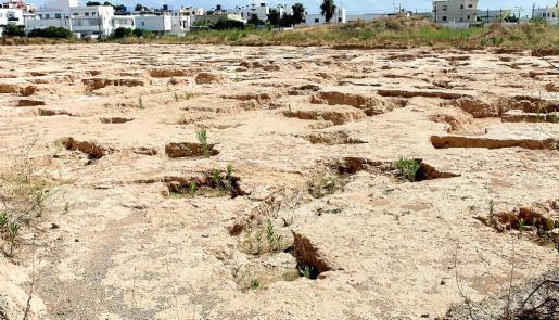 Imagen de los restos arqueológicos localizados en el solar destinado a VPO en Puig d'en Valls.