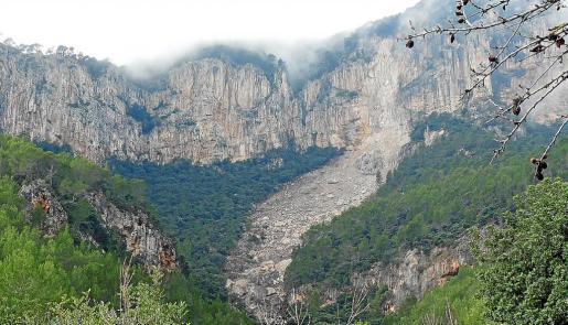 Desprendimiento de rocas y árboles en el Coll de Sóller en enero de 2017.