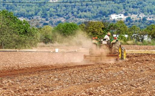 Un campesino labrando el campo con su tractor.