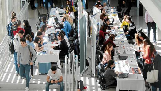 El DOIP organiza encuentros entre empresas y estudiantes para facilitar la búsqueda de empleo.
