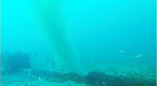 La Alianza por el Agua denunció los vertidos de la depuradora de Can Bossa este pasado verano.