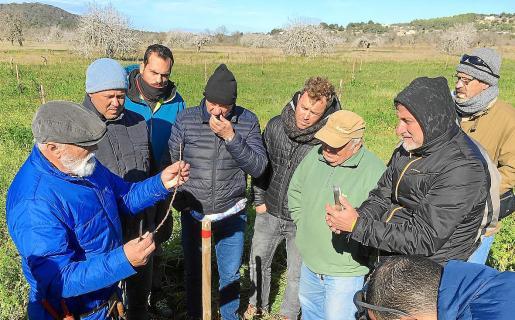 Los alumnos que asistieron al taller practicaron las técnicas de injerto en las nuevas plantaciones de almendro que hay en la zona.