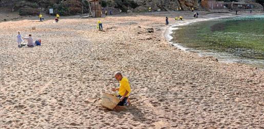 Los voluntarios se distribuyeron por la playa para poder abarcar y limpiar el mayor espacio posible.