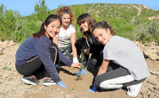 Los alumnos fueron divididos por grupos para facilitar la labor de reforestación y para su seguridad.