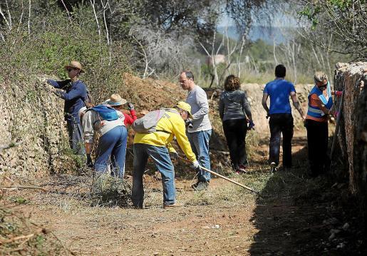 Vecinos y voluntarios retiran la maleza acumulada en este tramo de un antiguo 'camí de carro' que conecta Puig d'en Valls con el Camí des Pedrisset.