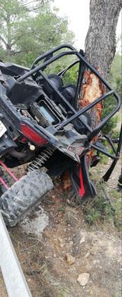 El buggy se empotró contra un pino.