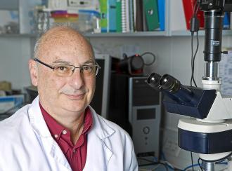 CRISPR: la técnica que cambió el rumbo de la ingeniería genética